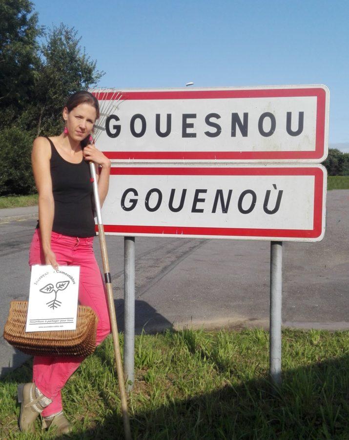 GOUESNOU