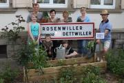 <h5>ALSACE, ROSENWILLER</h5><p></p>