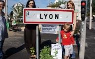 <h5>RHÔNE-ALPES, LYON</h5><p></p>