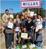 <h5>LANGUEDOC-ROUSSILLON, MILLAS</h5><p></p>