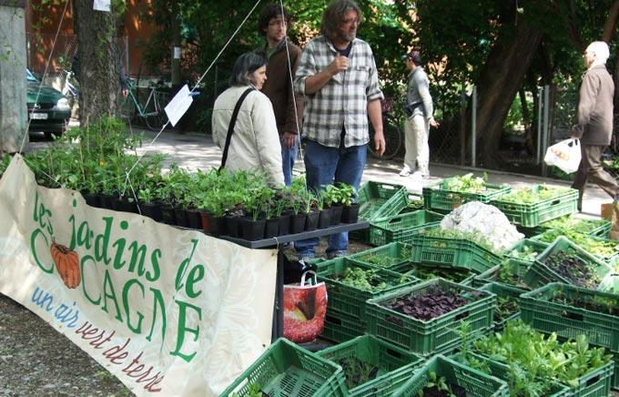 Suisse les incroyables comestibles les incroyables for Les jardins de cocagne