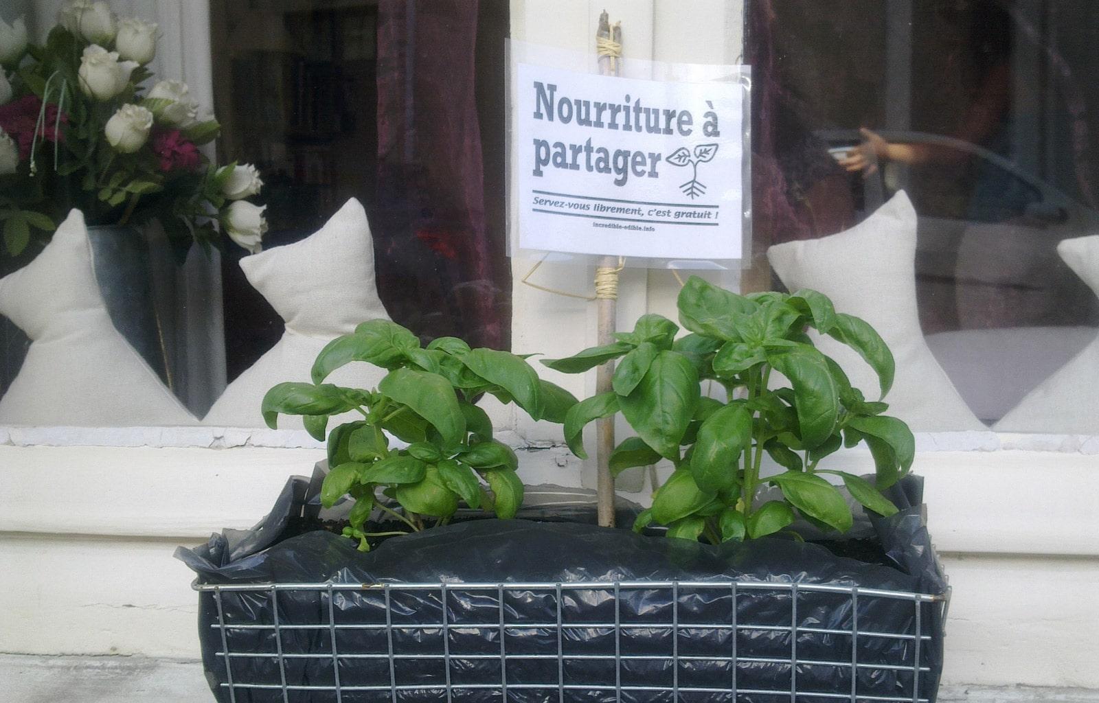 c601_incredible_edible_todmorden_france_sciences-et-vie-junior_agriculture_urbaine_autosuffisance_alimentaire_paris_basilic_incroyables_comestibles_w1600