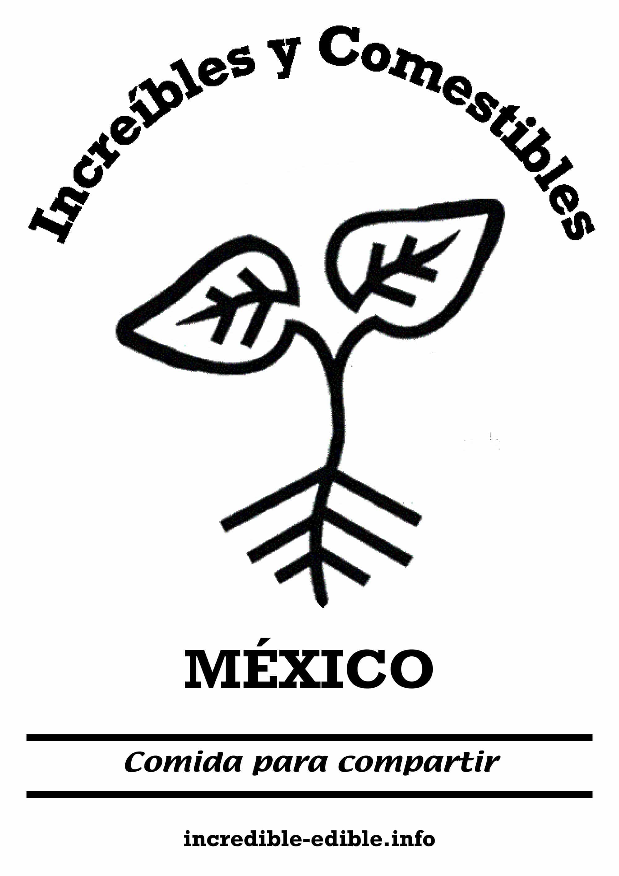 visuel_IE_mexico_w2000