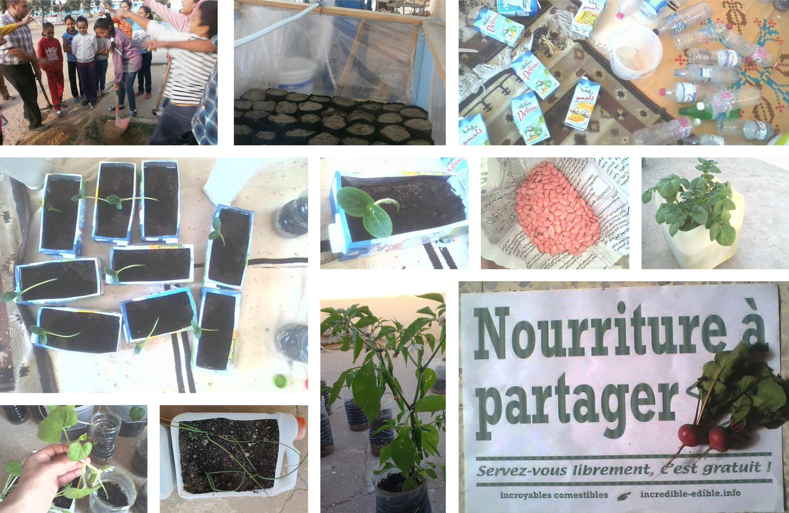 c637_incredible_edible_todmorden_tunisie_gafsa_agriculture_urbaine_incroyables_comestibles_w1600