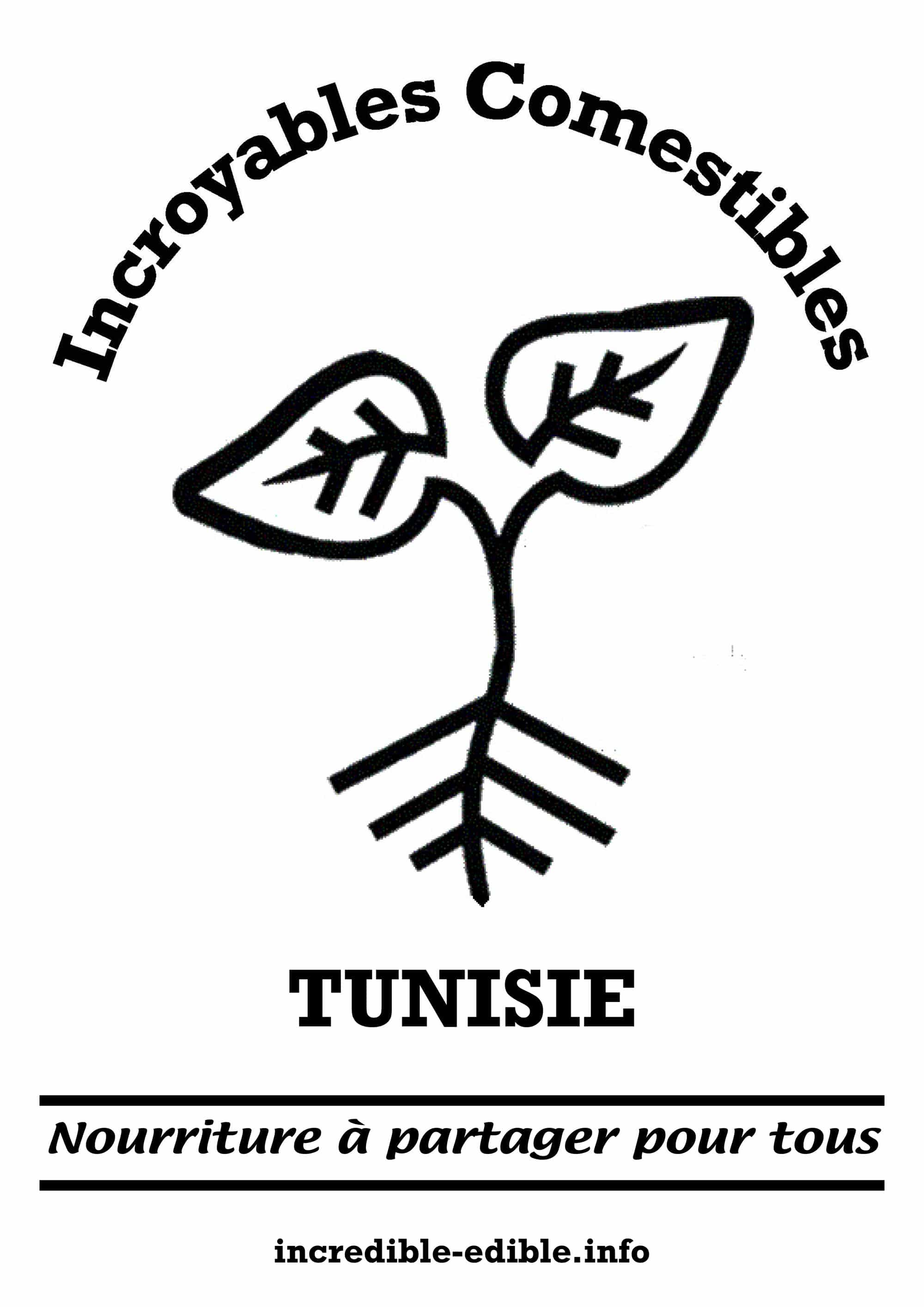 visuel_IC_tunisie_A3_w2000