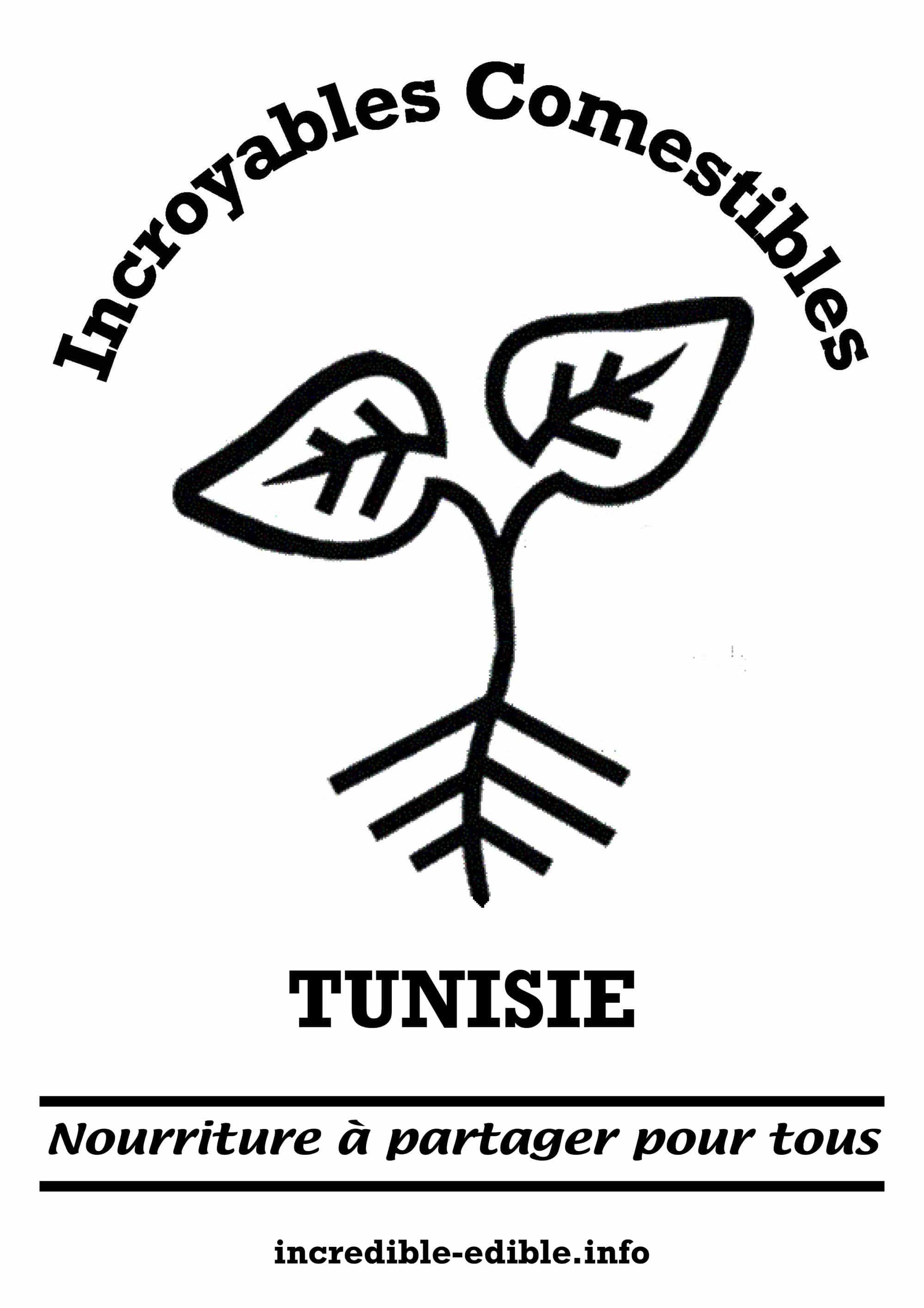 visuel_IC_tunisie_A3_w2000