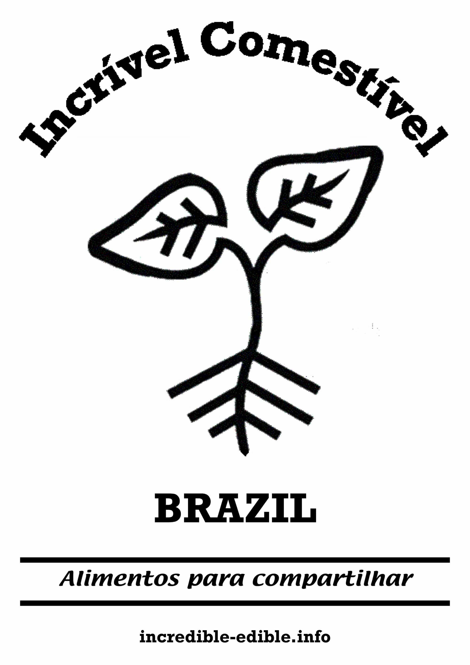 visuel_IE_brazil_w2000