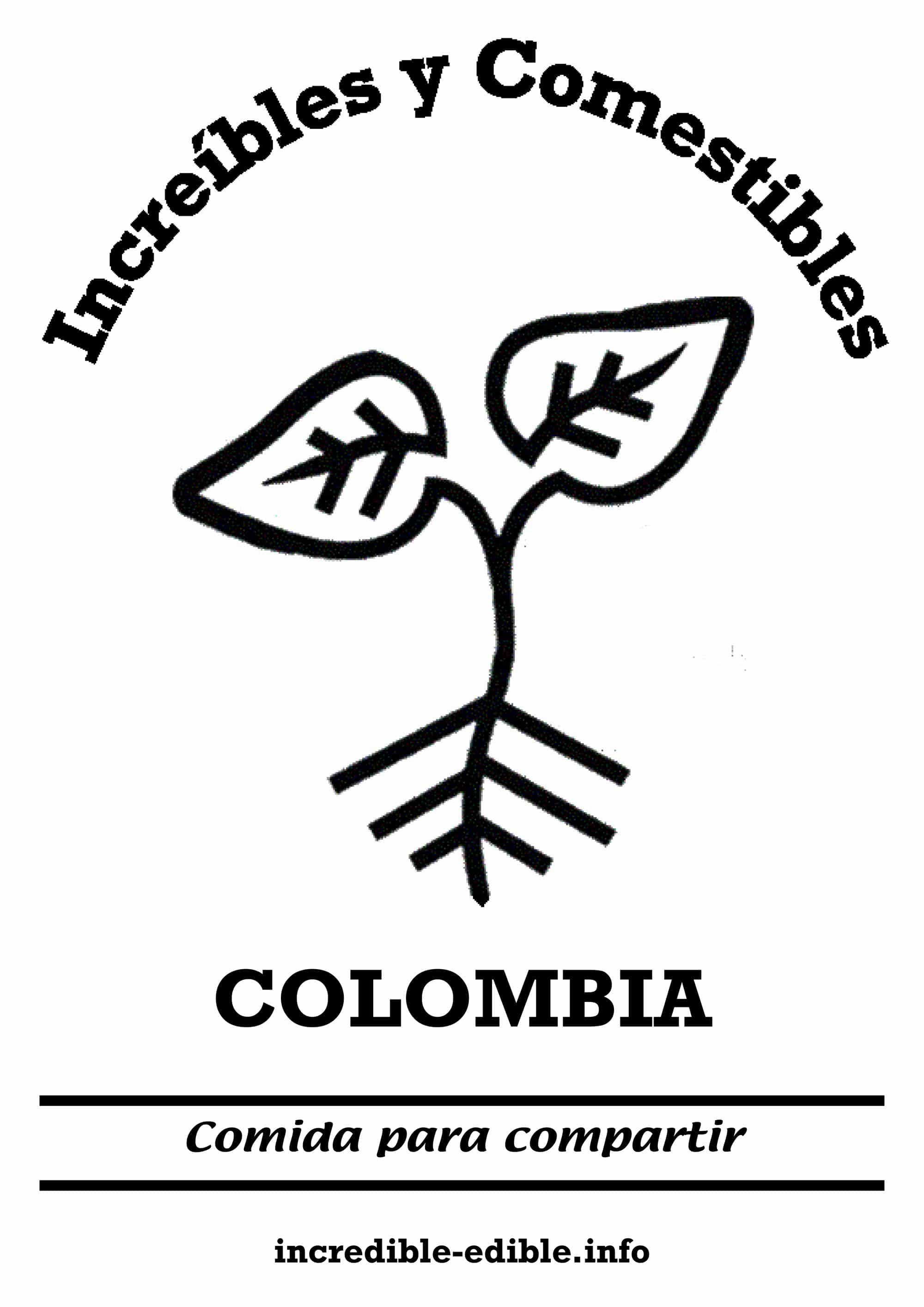 visuel_IE_colombia_w2000