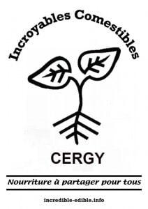 IC CERGY