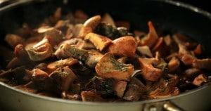 champignons_food