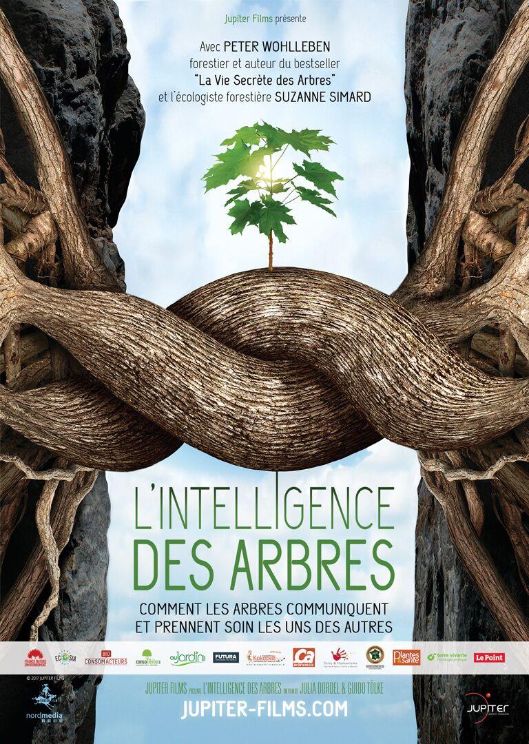 AFFICHE-du-film-L'INTELLIGENCE DES ARBRES
