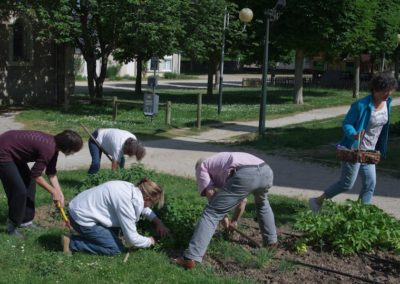 IC-Bellevigne-en-Layon-On-jardine-et-on-discute