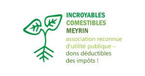 Logo IC Meyrin